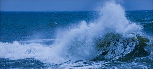 巨大津波について